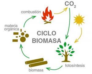 biomasa-ecologica
