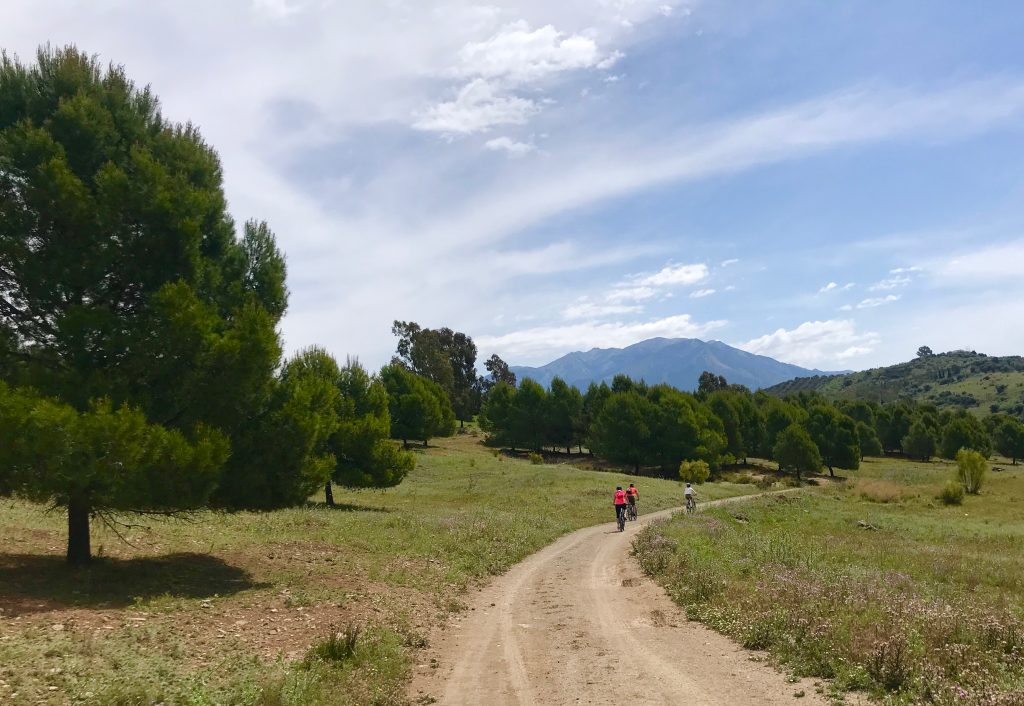 Ruta en bici alrededor del embalse