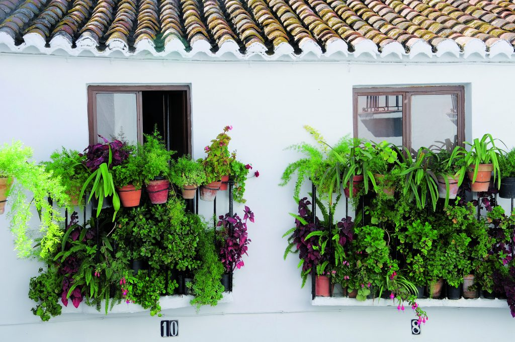 Balcones en Sedella