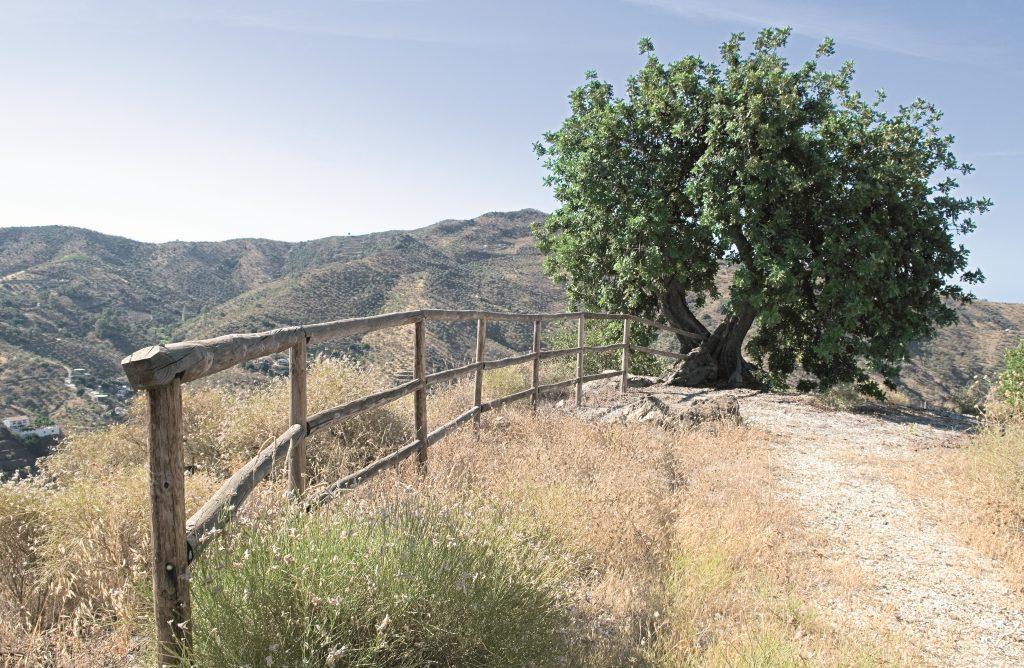 Dolmen del Cerro de la Corona (Totalán)