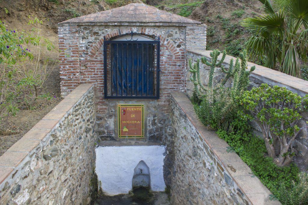 Fuente Noguera (Iznate)